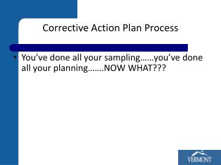 Corrective Action Plan Process