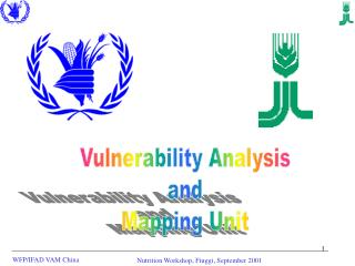 Vulnerability Analysis and Mapping Unit