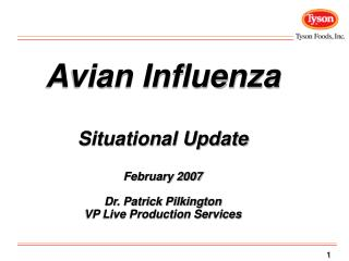 Avian Influenza Situational Update February 2007 Dr. Patrick Pilkington