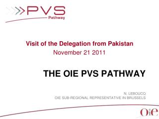 The OIE PVS  Pathway N. Leboucq OIE  Sub-regional representative  in  BRussels