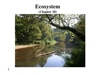Ecosystem (Chapter 18)