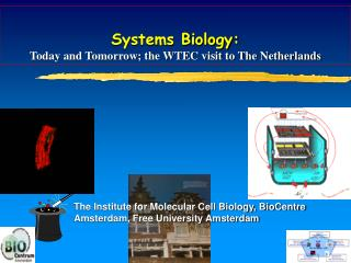 Systems Biology:  Today and Tomorrow; the WTEC visit to The Netherlands