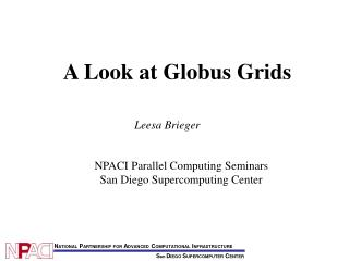 A Look at Globus Grids