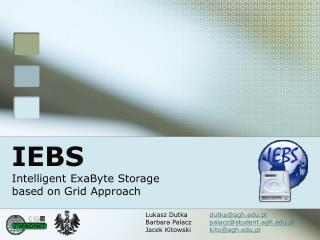 IEBS Intelligent ExaByte Storage  based on Grid Approach