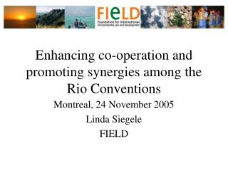 Enhancing co-operation and promoting synergies among the Rio Conventions