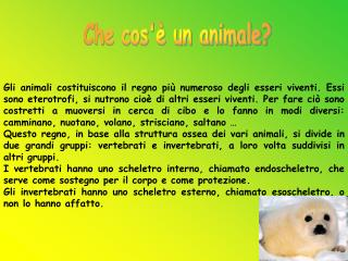 Che cos'è un animale?