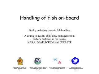 Handling of fish on-board