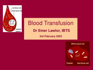 Blood Transfusion Dr Emer Lawlor, IBTS 3rd February 2003