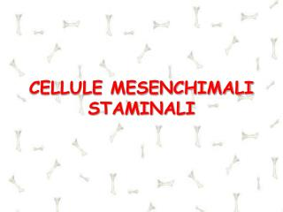 CELLULE MESENCHIMALI STAMINALI