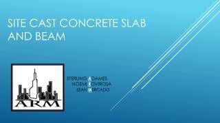 Site Cast Concrete slab and beam
