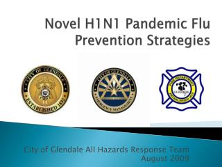 Novel H1N1 Pandemic Flu Prevention Strategies