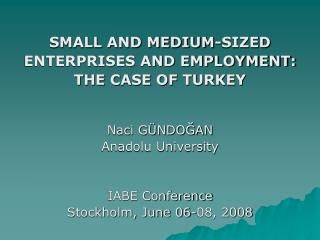SMALL AND MEDIUM-SIZED  ENTERPRISES AND EMPLOYMENT:  THE CASE OF TURKEY Naci GÜNDOĞAN