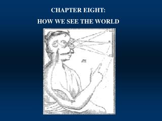 CHAPTER EIGHT: HOW WE SEE THE WORLD