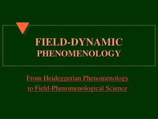 FIELD-DYNAMIC PHENOMENOLOGY