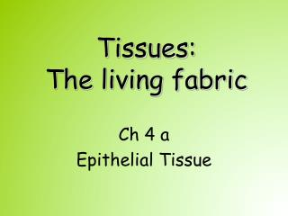 Tissues:  The living fabric