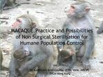 MACAQUE:Practice and Possibilities of Non Surgical Sterilisation for Humane Population Control