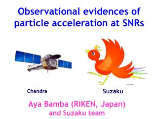 Observational evidences of particle acceleration at SNRs