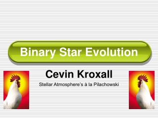 Binary Star Evolution