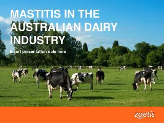 MASTITIS IN THE AUSTRALIAN DAIRY INDUSTRY