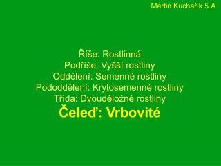 Martin Kuchařík 5.A