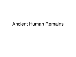 ANCIENT HUMAN REMAINS