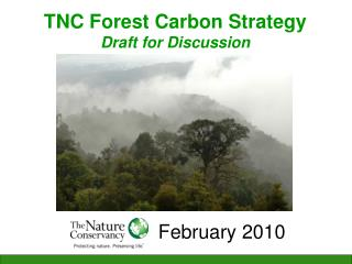 TNC Forest Carbon Strategy Draft for Discussion