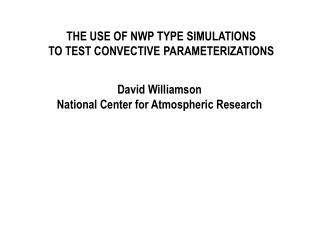 THE USE OF NWP TYPE SIMULATIONS TO TEST CONVECTIVE PARAMETERIZATIONS