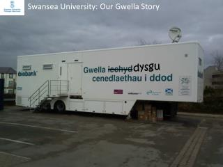 Swansea University: Our Gwella Story