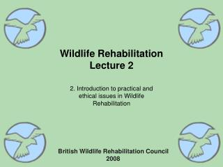 Wildlife Rehabilitation Lecture 2