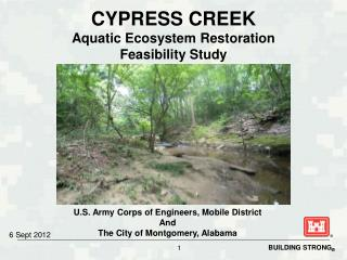 CYPRESS CREEK Aquatic Ecosystem Restoration  Feasibility Study