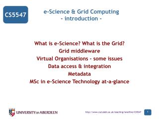 e-Science & Grid Computing - introduction -