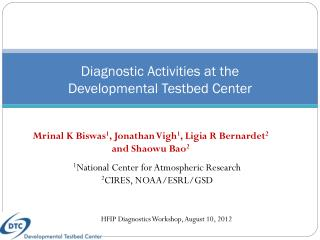 Diagnostic Activities at the  Developmental Testbed Center