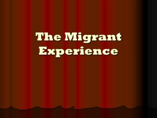 The Migrant Experience