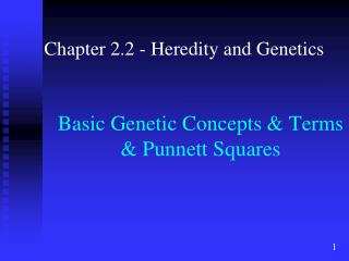 Basic Genetic Concepts & Terms & Punnett Squares