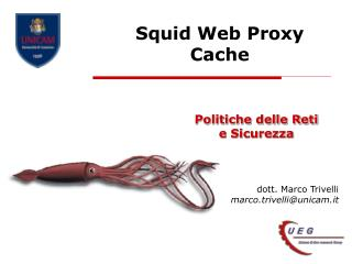 Squid Web Proxy Cache
