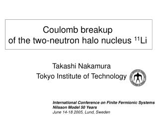 Coulomb breakup  of the two-neutron halo nucleus  11 Li
