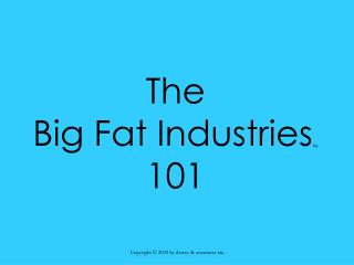 The  Big Fat Industries TM 101