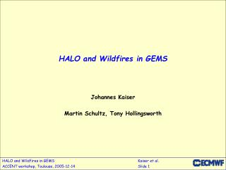 HALO and Wildfires in GEMS