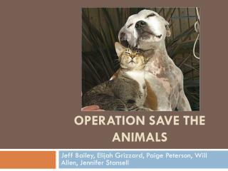 Operation Save The Animals
