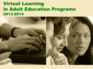 Virtual Learning in Adult Education Programs 2013-2014