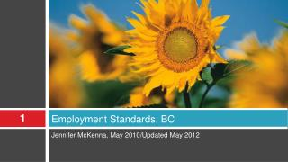 Employment Standards, BC