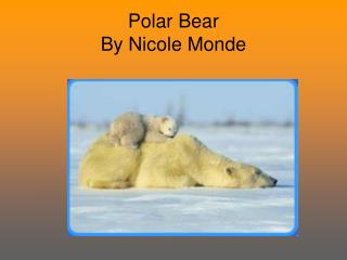 Polar Bear By Nicole Monde