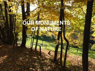 OUR MONUMENTS OF NATURE