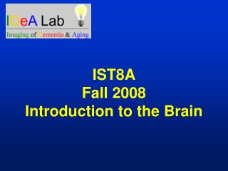 IST8A Fall 2008 Introduction to the Brain