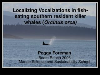 Localizing Vocalizations in fish-eating southern resident killer whales ( Orcinus orca)