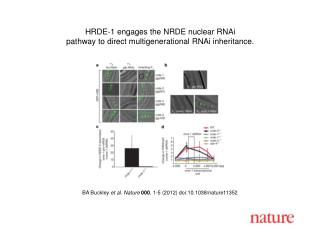 BA Buckley et al. Nature 000 , 1-5 (2012) doi:10.1038/nature11352