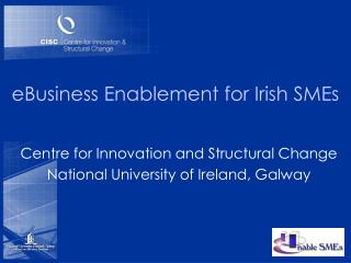 eBusiness Enablement for Irish SMEs