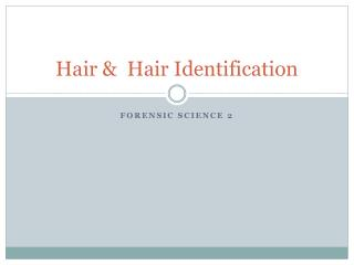 Hair &  Hair Identification