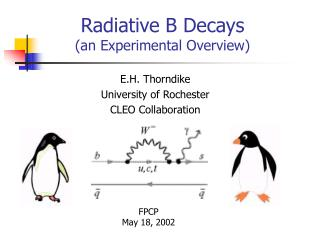 Radiative B Decays  (an Experimental Overview)