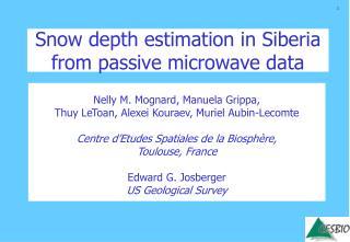 Snow depth estimation in Siberia from passive microwave data